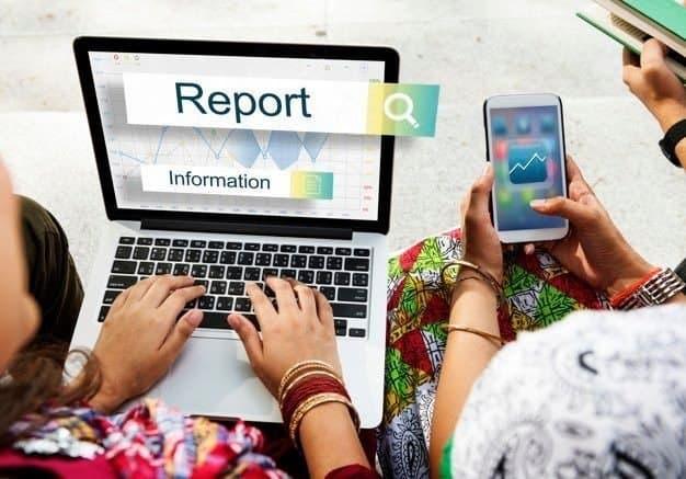 Report Performance information
